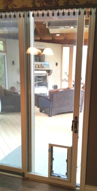 Mile High Dog Doors In Glass Pet Door