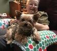 Satisfied Customer Testimonial for Pet Door