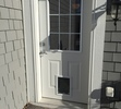 White Pet Door