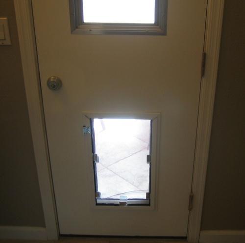 Hale Pet Door Door Dog Door Installation