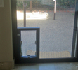 Hale Pet Door Through Glass Dog Door Installation