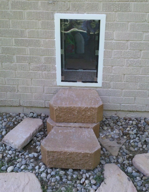Dog Door Through Brick New Born Dog Training