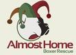 https://www.halepetdoor.com/system/dealers/link_logos/102/original/almost_home_boxer_rescue.jpg?1295968271