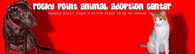 https://www.halepetdoor.com/system/dealers/link_logos/99/original/rocky_point_animal_adoption_center.jpg?1295967862