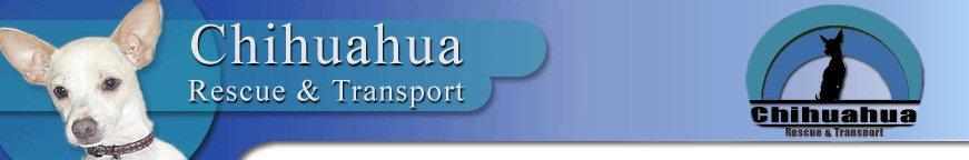 Hale Pet Door - Chihuahua Rescue Organizations