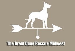 Great dane ms small