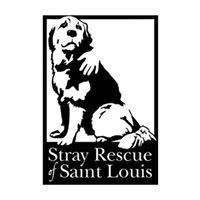 Stray st louis