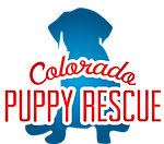 Co puppy rescue