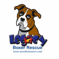 Hale Pet Door - Boxer Rescue Organizations