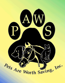 Pets are worth saving small il