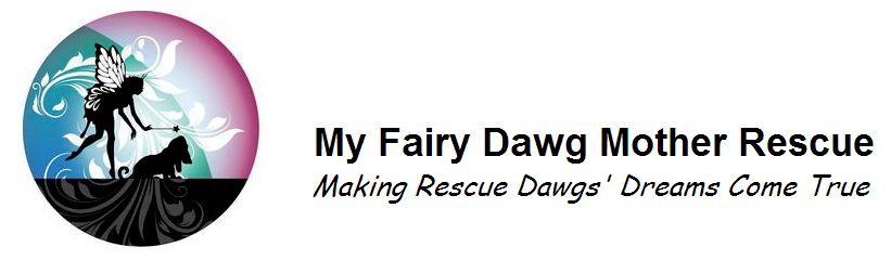 My fairy dawg mother rescue