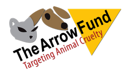 The arrow fund