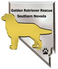 Hale Pet Door Golden Retriever Rescue Organizations