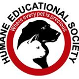 Humane ed soc chat