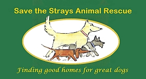 Save the strays