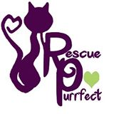 Rescue purrfect