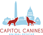 Capitol canines small