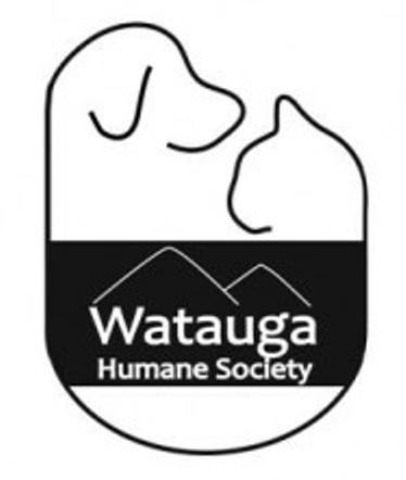 Image Result For Watauga County