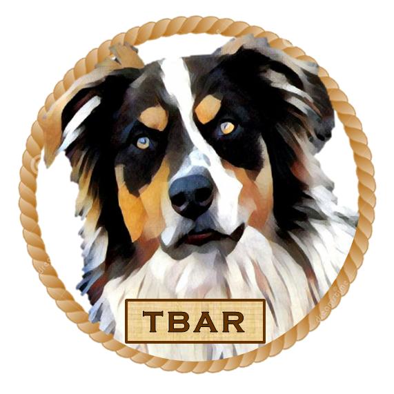 Hale Pet Door - Australian Shepherd Rescue Organizations