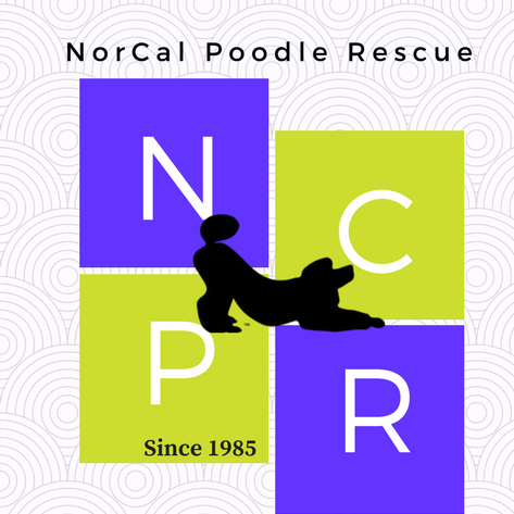 Hale Pet Door - Rescue Organization Details
