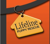 Lifelinepuppyrescue