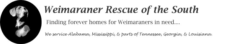 Weim rescue of the south
