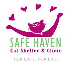 Safe haven cats