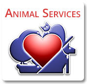 Animal services