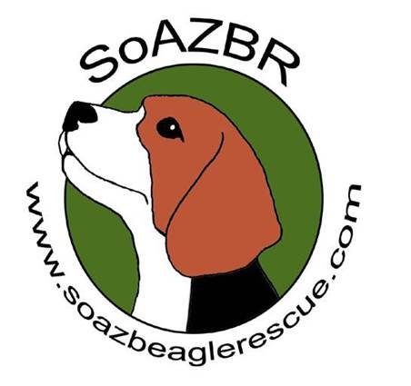 Southern arizona beagle rescue