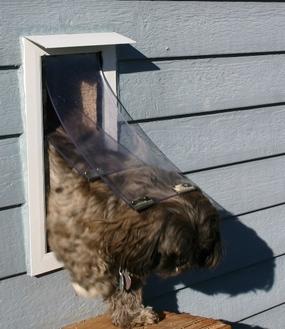 Dark Bronze Frame Wall Pet Door