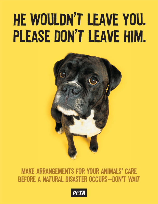 Peta Public Service Animal Disaster Preparedness