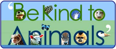 Be Kind To Animals Month