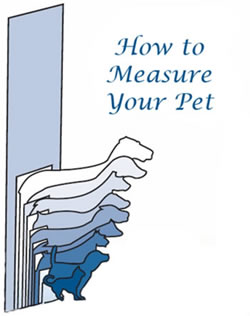 how to measure your pet for a pet door  sc 1 st  Hale Pet Door & Hale Pet Door - Sizing Information