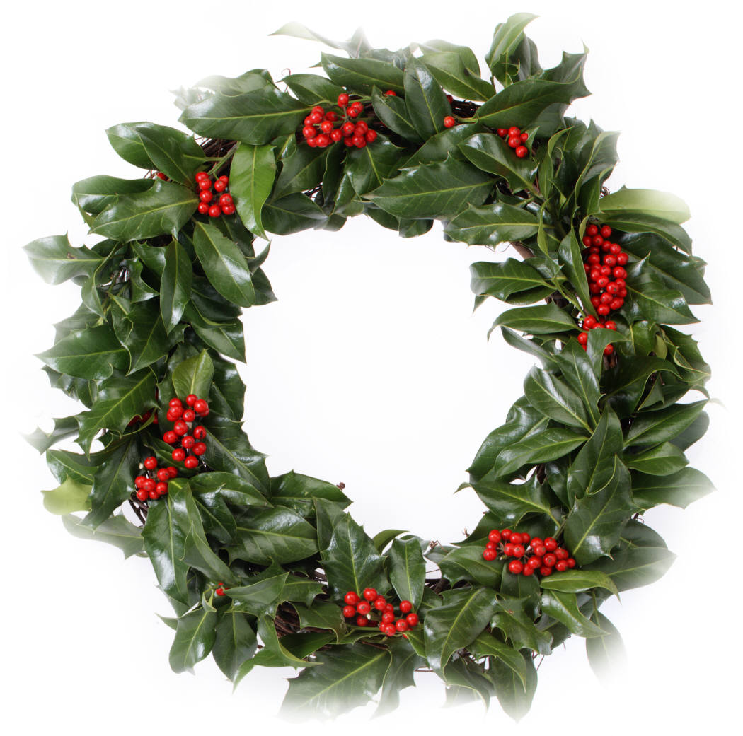 Holly wreath is poisonous to dogs